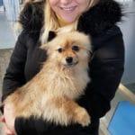 Gewassen hond bij Carwash Kampen